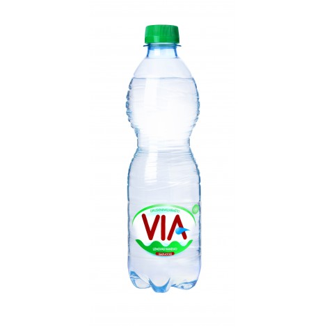 Lengvai gazuotas stalo vanduo VIA, 0.5 L